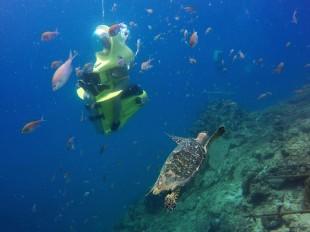 Onde fazer mergulho em Curaçao